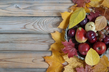 Autumn still life with various fruits are lying in a wicker basket. Autumn maple and poplar leaves. Harvesting. Archivio Fotografico