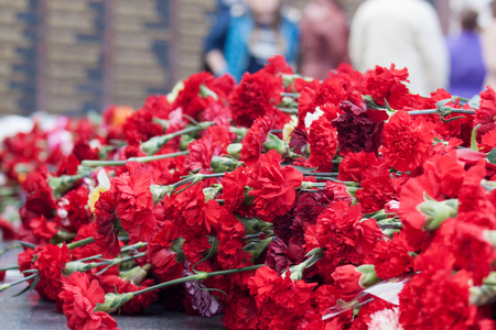 Red carnation flowers on a memorial marble board. Memorial to fallen soldiers in the world war II. Victory in Europe Day.