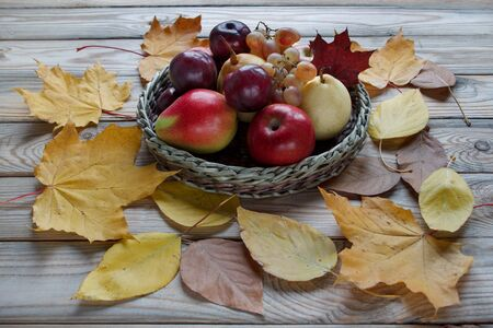Autumn still life with various fruits are lying in the wicker plate. Autumn maple and other leaves. Harvesting.