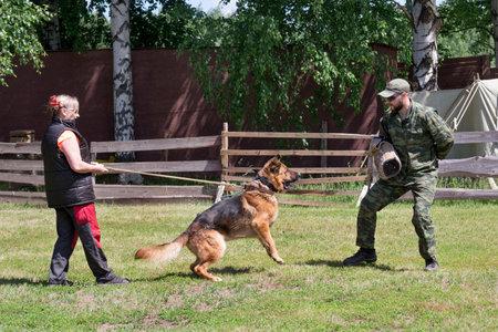 Russia, Izhevsk - June 14, 2020: Dog trainer with a german shepherd dog. Training dog obedience skills. Dog training center.