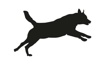 Black dog silhouette. Running rottweiler puppy. Isolated on a white background. Vector illustration.