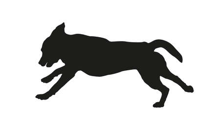 Black dog silhouette. Running labrador retriever puppy. Isolated on a white background. Vector illustration.