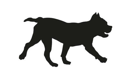 Black dog silhouette. Running american bully puppy. Isolated on a white background. 向量圖像