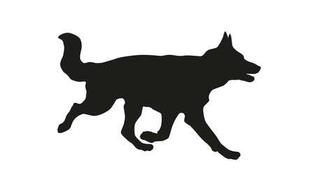 Running german shepherd dog puppy. Black dog silhouette. Isolated on a white background. 向量圖像