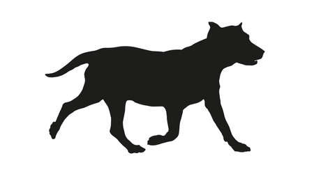 Running labrador retriever puppy. Black dog silhouette. Isolated on a white background.