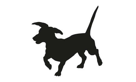 Black dog silhouette. Running dachshund puppy. Isolated on a white background. Vector illustration. 向量圖像