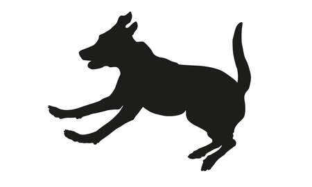 Running and jumping labrador retriever. Black dog silhouette. Isolated on a white background. Vector illustration.