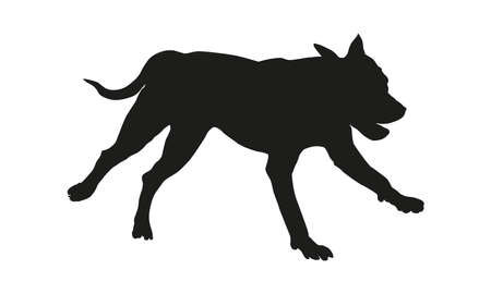 Black dog silhouette. Running american pit bull terrier puppy. Isolated on a white background. Vector illustration. 向量圖像