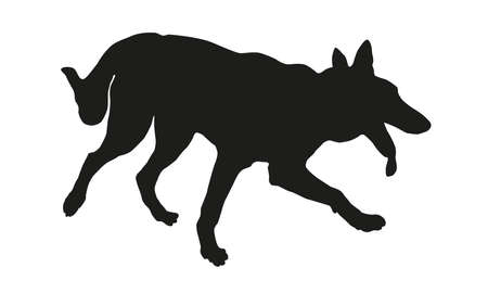 Running west siberian laika puppy. Black dog silhouette. Isolated on a white background. Vector illustration.