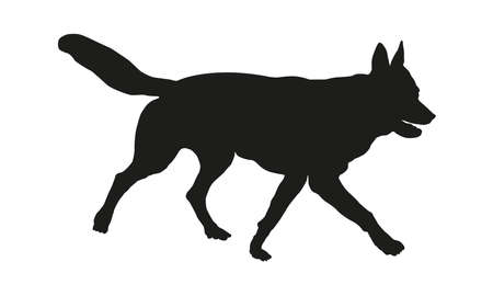 Running czechoslovak wolfdog puppy. Black dog silhouette. Pet animals. Isolated on a white background. Vector illustration. Illustration