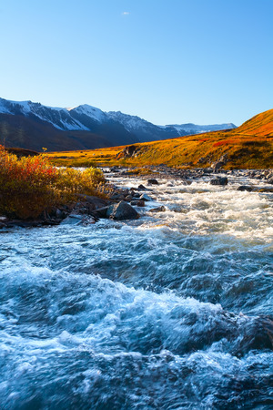 the rough mountain river among glaciers in the evening photo