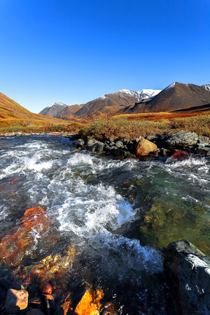 range of motion: the mountain river of Altai on sunset