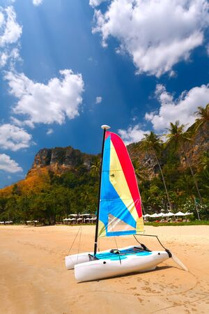 catamaran: White catamaran with bright sail on a sandy beach