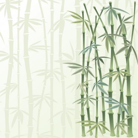 canne: cornice floreale in stile cinese