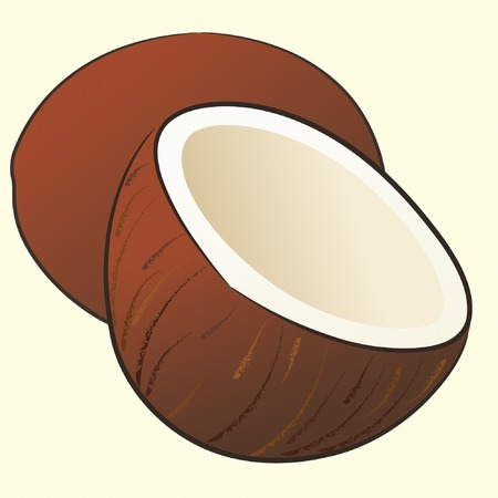 coconut drink: two coconuts on isolated background