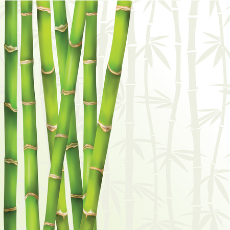green frame in bamboo style Vector