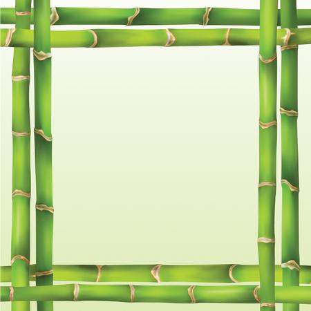 etnia: marco verde de bambú de estilo