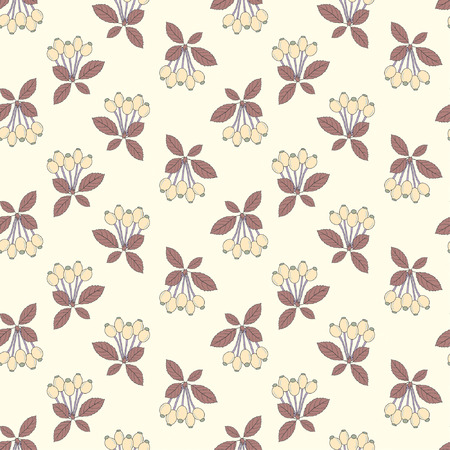 dogrose: dogrose berry in one pattern