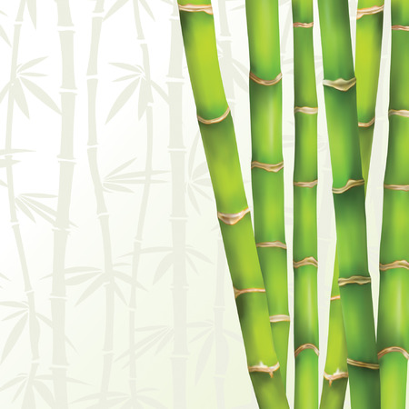 bamboo frame: green frame in bamboo style