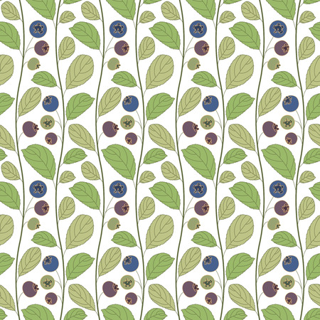 whortleberry: blueberries on a white background in seamless pattern