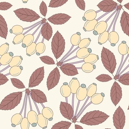 berries of dog rose on a white background in seamless pattern Vector