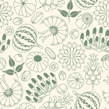 seeds and berries on a white background in seamless pattern Vector