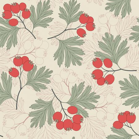 hawthorn berries on a beige background in seamless pattern