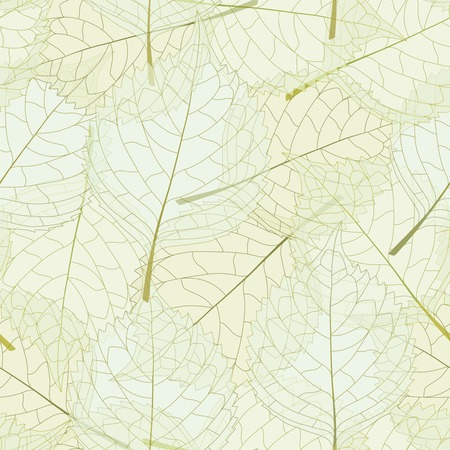 sentimental: transparent leaves on a white background in seamless pattern
