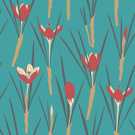 sepal: red crocuses on a blue background in seamless pattern Illustration