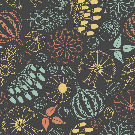 fruit stem: seeds and berries on a dark background in seamless pattern Illustration