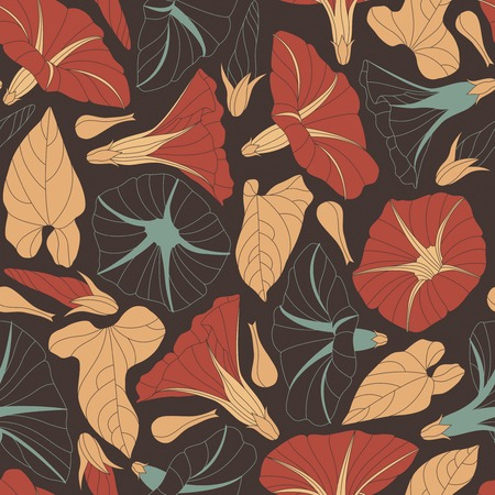 convolvulus: bindweed on a dark background in seamless pattern