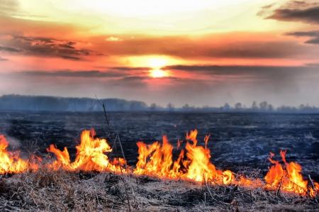 Vuur van gras bij zons ondergang
