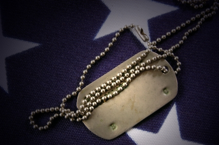 Dog tag on American Flag.Freedom is not free  Stock Photo - 7515747