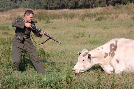 reenacting: German soldier wants to kill the cow. WW2 reenacting  Stock Photo