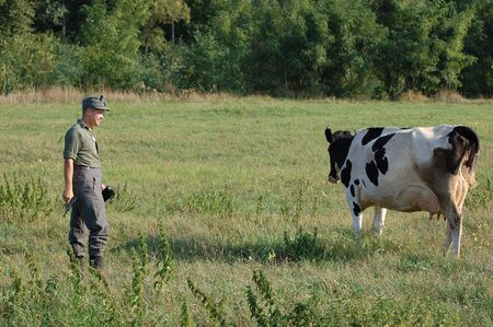 German soldier wants to kill the cow. WW2 reenacting  photo