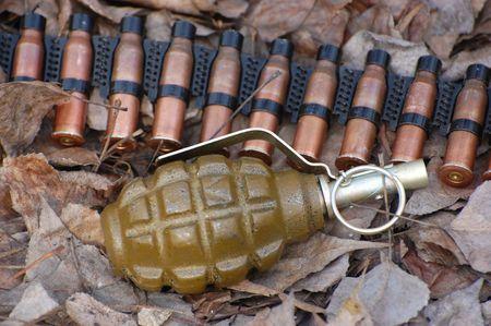 Hand grenade photo