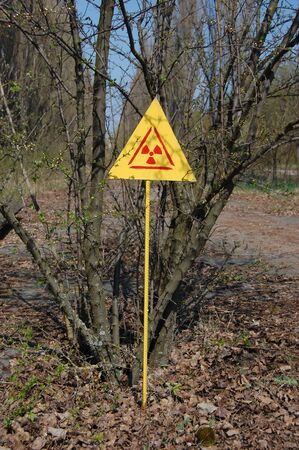 City park.Chernobyl area. Lost city Pripyat. Ukraine. Kiev region Stock Photo - 8328072