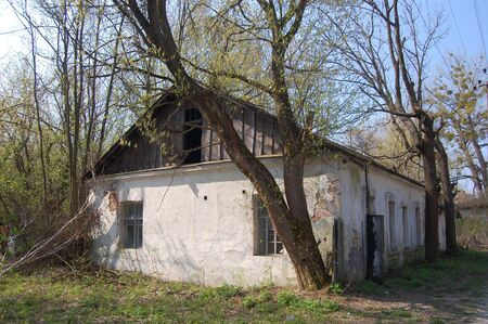 environmentalline: APR. 25,2009 Chernobyl area. Lost city Pripyat. Modern ruins. Ukraine. Kiev region.April 25,2009