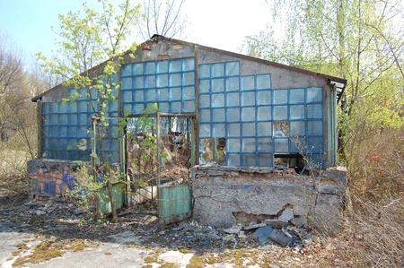 APR. 25,2009.School greenhouse.Chernobyl area. Lost city Pripyat. Modern ruins.. Ukraine. Kiev region.