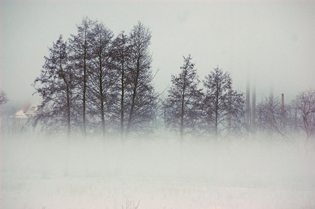 kiev: Fog at winter in Ukrainian countryside.Near Kiev Stock Photo