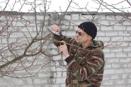 Gardener pruning the branches of tree in early spring  Near Kiev,Ukraine Stock Photo - 12548682