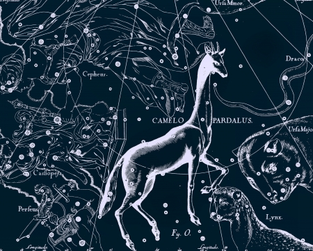 Constellation vintage map Stock Photo - 18603746