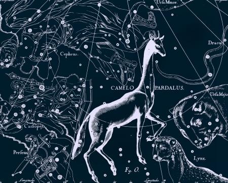 Constellation vintage map Stock Photo - 18603746