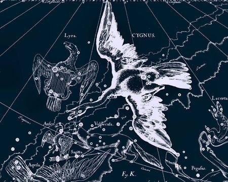 constelaciones: Constellation vendimia mapa