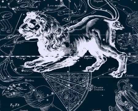 constellation: Constellation vintage map