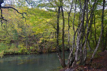 crimean: Nature of Crimean Peninsula,Ukraine