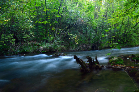 Nature of Crimean Peninsula,Ukraine  photo