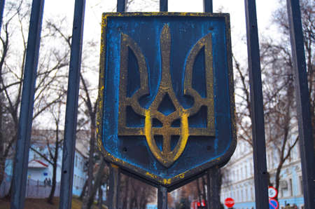 battalion: KIEV, UKRAINE - February 2, 2015: Ukrainian nationalists of Battalion Aydar burn out ukrainian state simbol during protest against president Poroshenko.The gate of the Ministry of Defence.