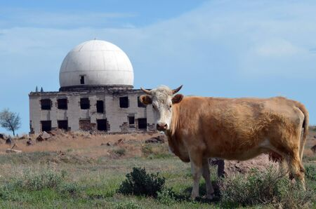 urban decay: Area 35. (Ploshadka 35 ru.) Sary Shagan.Former Soviet anti-ballistic missile testing range.Kazakhstan. Editorial