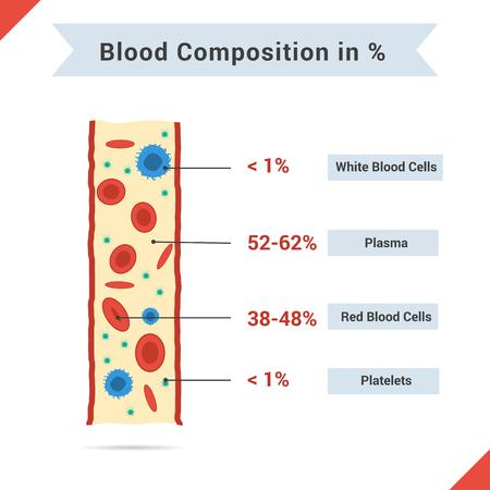 혈액 성분의 인포 그래픽. 혈액 튜브 및 기사 또는 다른 미디어에 대한 설명과 함께 네 가지 구성 요소
